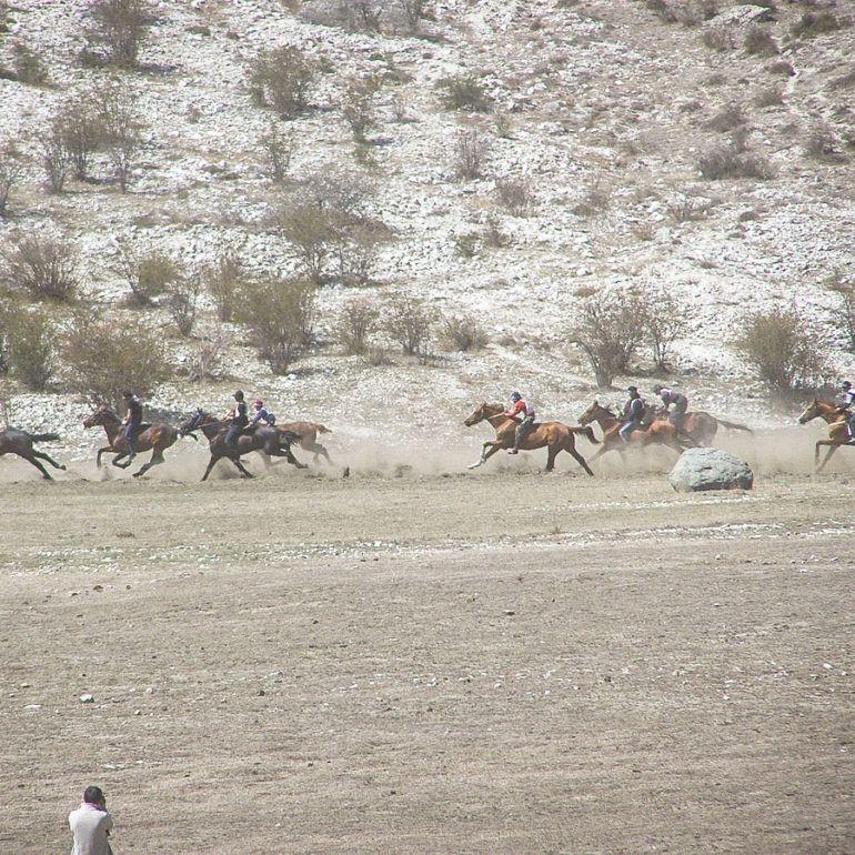 Фото Праздник первой борозды-2009