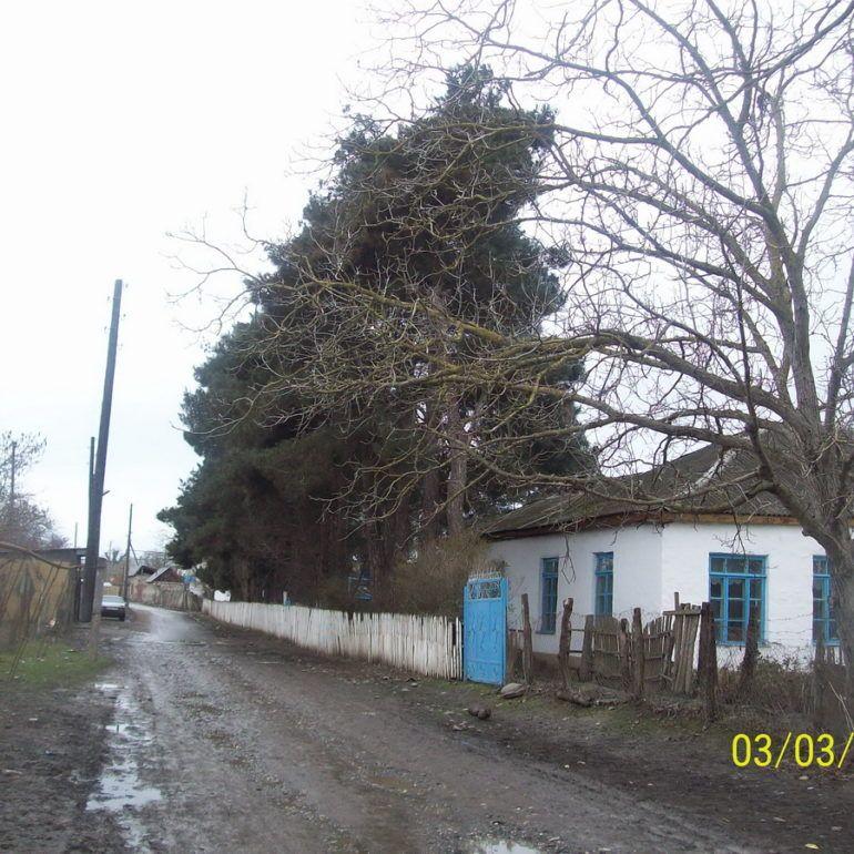 Фото Бильбиль-Казмаляр