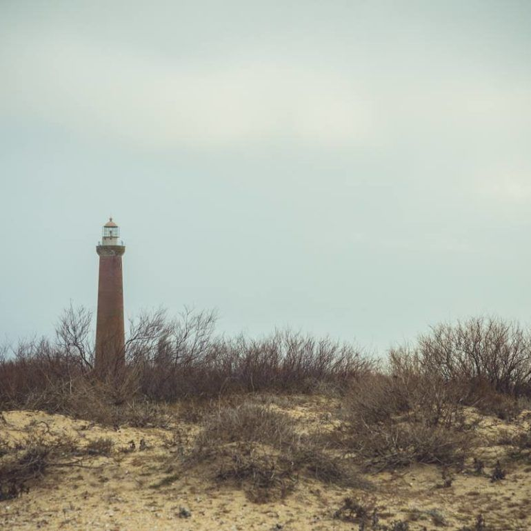 Фото Фото Остров Чечень