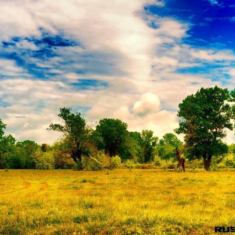 Фото Азадоглы