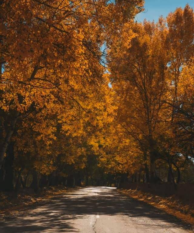 Фото Лакский район