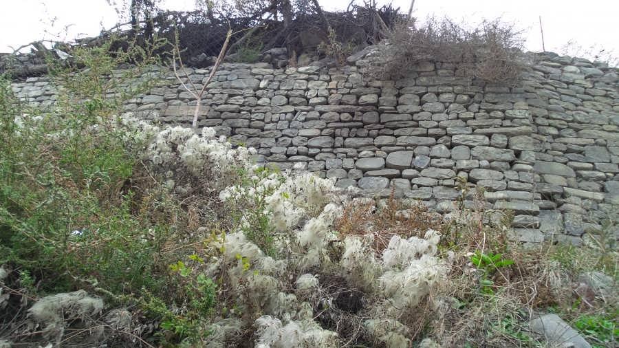 Photo каменная стена